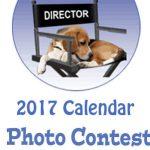 beagledirector_image